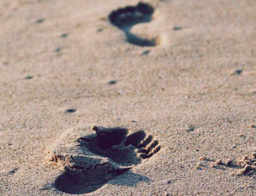 Kunst der kleinen Schritte