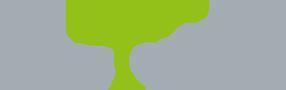 Deutsche Provinz der Salvatorianer Logo
