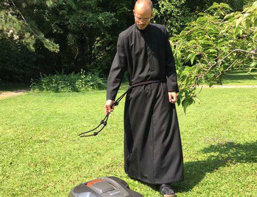 Schritt für Schritt zur ewigen Profess
